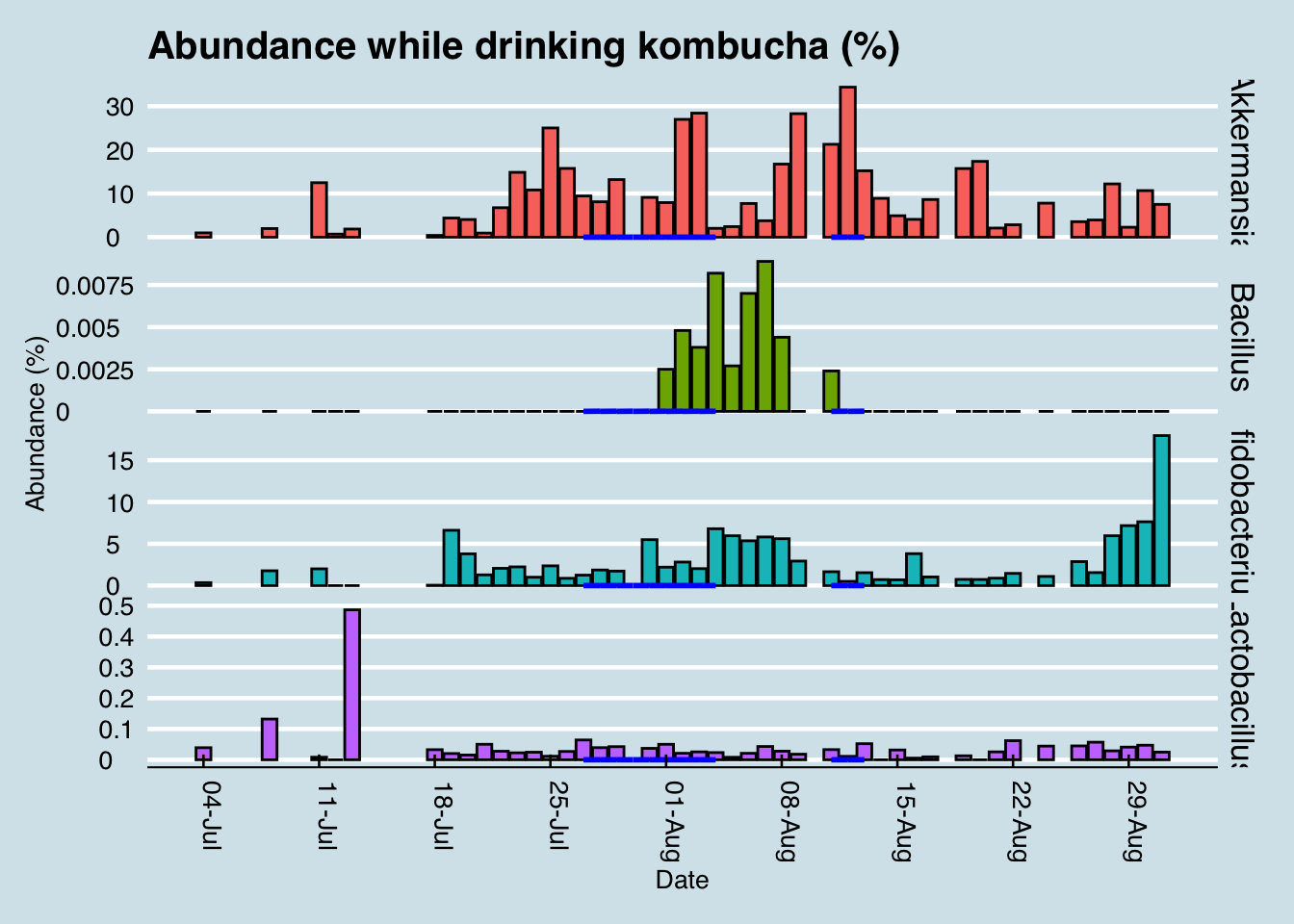 Daily abundance of key microbes while drinking kombucha (blue lines). Blank regions are days when I have no data.