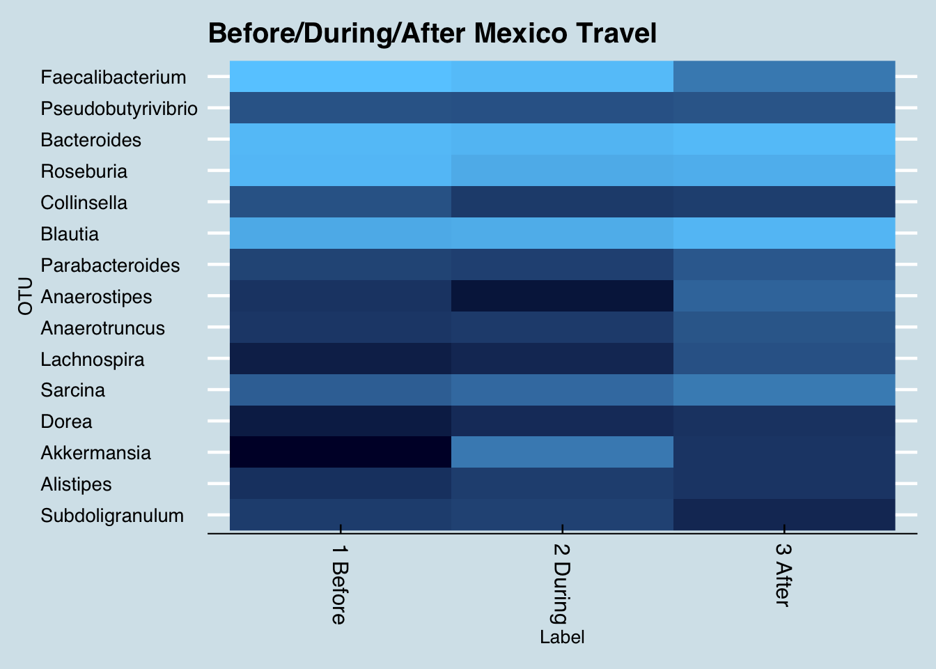 Changes in key genus abundance when traveling to Mexico. (Lighter shades are more abundant)
